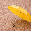 yellow umbrella — Stock Photo