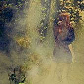 Magic woods — Stock Photo