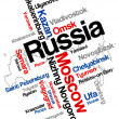 Russia map and cities — Stock Vector #11543396