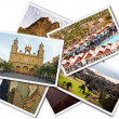 Gran Canaria Collage — Stock Photo