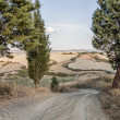Tuscan Roads — Stock Photo