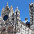 Siena Cathedral, (Duomo di Siena) — Stock Photo