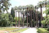 The National Garden of Athens — Stock Photo