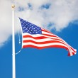 American flag flying in the wind — Stock Photo #12453085