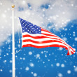 American flag flying in the wind - Stock Photo