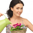 Housewife with flower in basket and watering can — Stock Photo #22592193