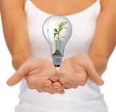 Yeşil ışık ampul ile el — Stok fotoğraf