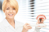 Doctor with toothbrush and jaws — Stock Photo