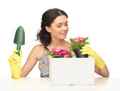 Housewife with flower in pot and gardening set — Foto Stock