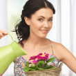 Housewife with flower in basket and watering can - Stock Photo