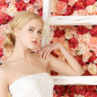 Woman with old ladder and background full of roses - Stock Photo