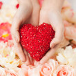 Woman's hands holding heart - Foto Stock