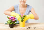 Housewife with flower in pot and gardening set — Photo