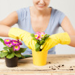 Housewife with flower in pot and gardening set — Stock Photo #24011431