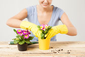 Housewife with flower in pot and gardening set — 图库照片
