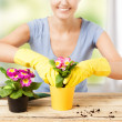 Stock Photo: Housewife with flower in pot and gardening set