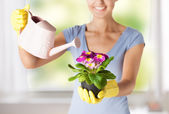 Woman holding pot with flower — Stock Photo
