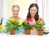 Housewife with flower in pot and gardening set — Foto de Stock
