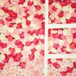 Background full of white and pink roses — Stockfoto