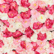 Seamless pattern with flowers — Foto Stock