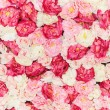 Seamless pattern with flowers — Stockfoto
