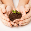 Hands with green sprout and ground — Stock Photo