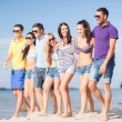 Group of friends having fun on the beach — Stock Photo #32679085