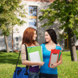 Stock Photo: Two smiling students with bag and folders