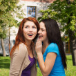 图库照片: Two smiling girls whispering gossip