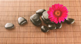 Massage stones with flower on mat — Stock Photo