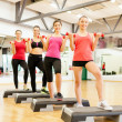 Stock Photo: Group of smiling female with dumbbells and step