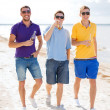 Male friends on the beach with bottles of drink — Stock fotografie