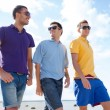 Stock Photo: Group of male friends walking on beach