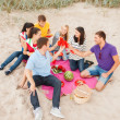 Stock Photo: Group of friends celebrating birthday on beach