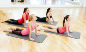 Group of smiling women stretching on mats in gym — Foto Stock