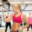 Young sporty woman with light dumbbells at gym — Stock Photo