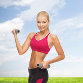 Young sporty woman with light dumbbells — Stock fotografie