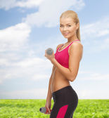 Young sporty woman with light dumbbells — Stok fotoğraf