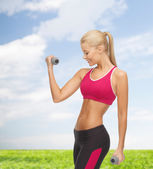 Young sporty woman with light dumbbells — Photo