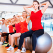 Group of people working out in pilates class — Stock Photo #46021283