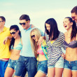 Group of friends having fun on the beach — Stock Photo #46613149