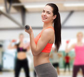 Young sporty woman with light dumbbells — Stock Photo