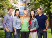 Group of standing smiling students — Stock Photo