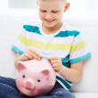 Smiling little boy with piggy bank and money — Stock Photo #49440703