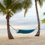 Hammock on tropical beach — Stock Photo #49611671