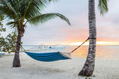 Hammock on tropical beach — Stock Photo