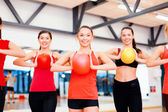 Group of people working out with stability balls — Foto Stock