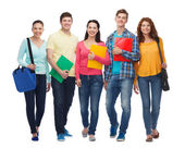 Group of smiling teenagers with folders and bags — Stock Photo