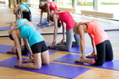 Group of smiling women stretching in gym — ストック写真