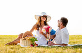 Smiling couple drinking champagne on picnic — Stock Photo